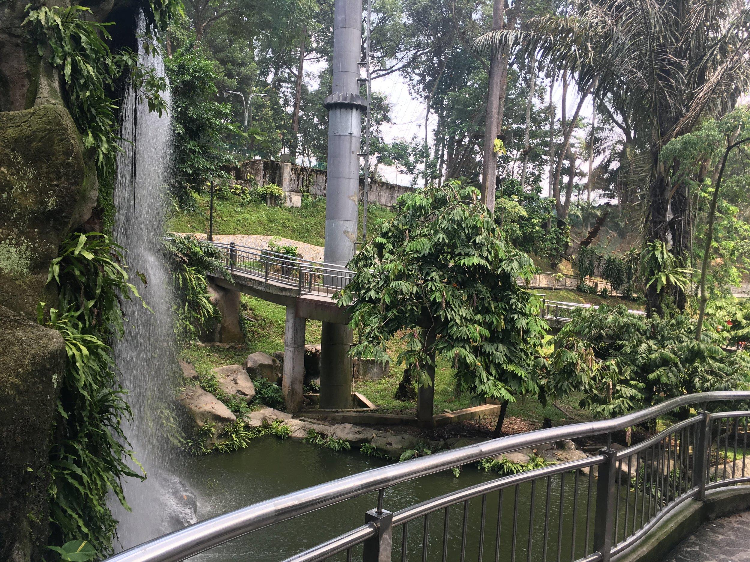 jungle inside KL Bird Park, Malaysia