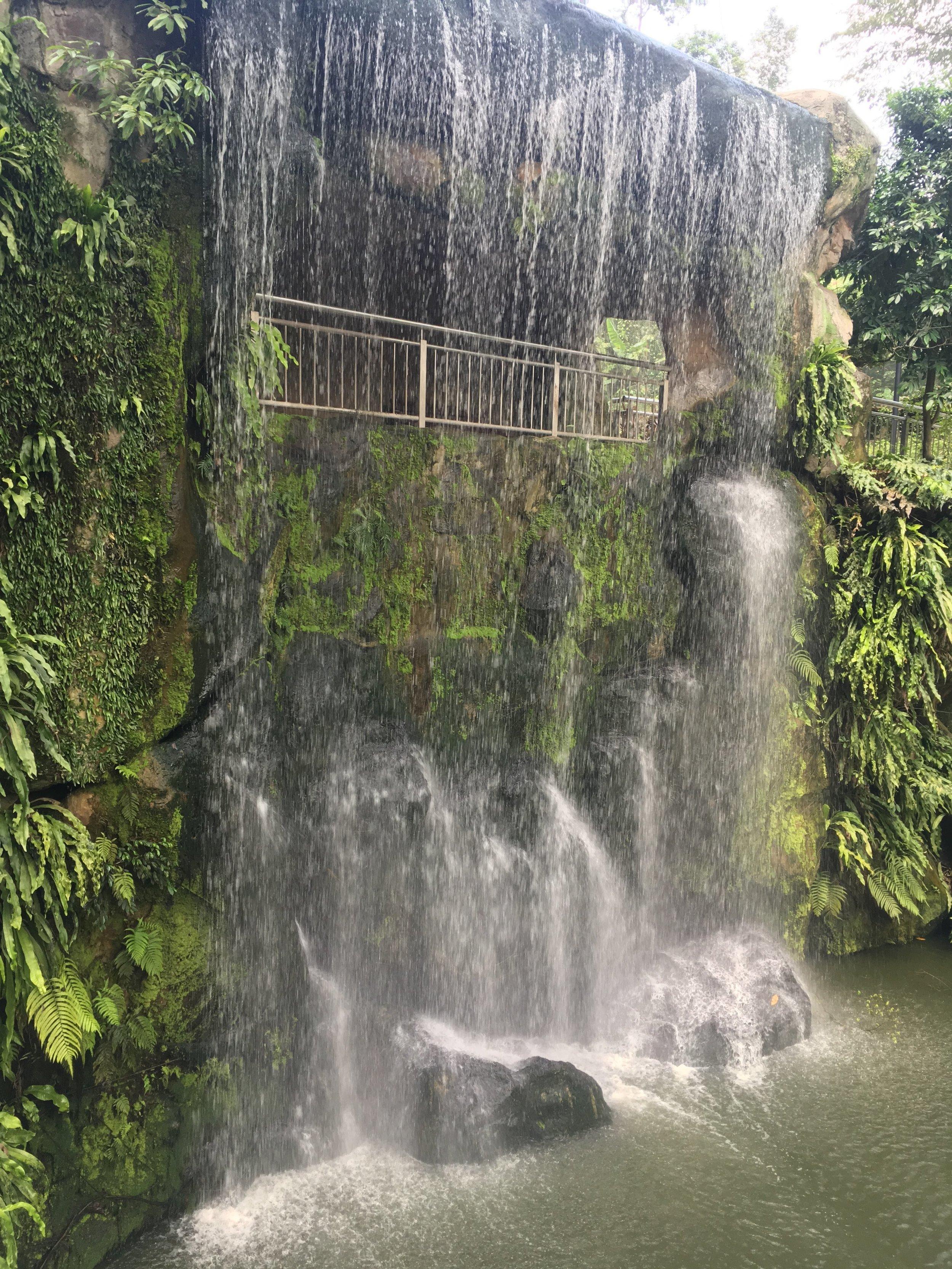 a waterfall at the Kuala Lumpur Bird Park