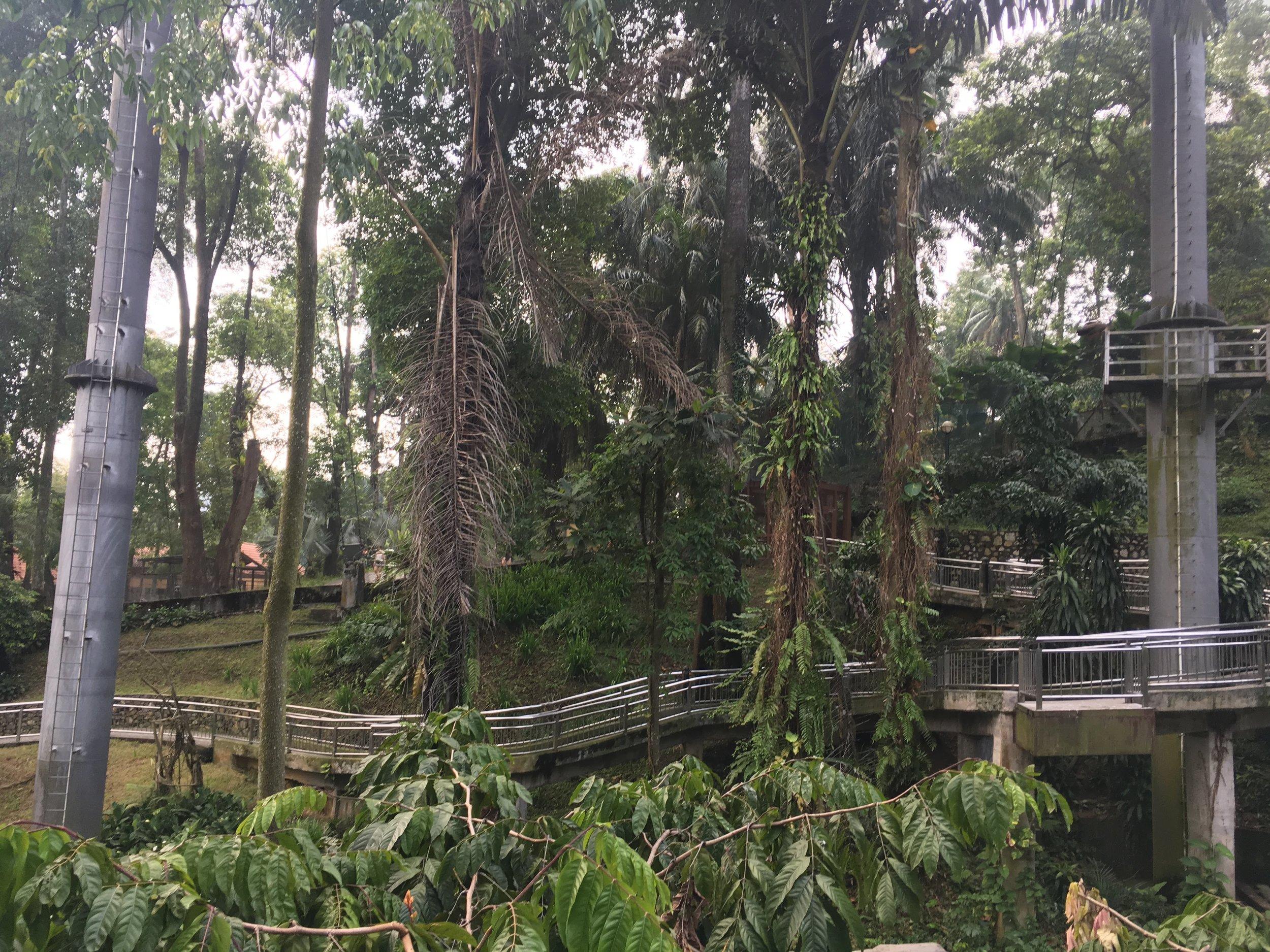 jungle path at KL Bird Park, Kuala Lumpur, Malaysia