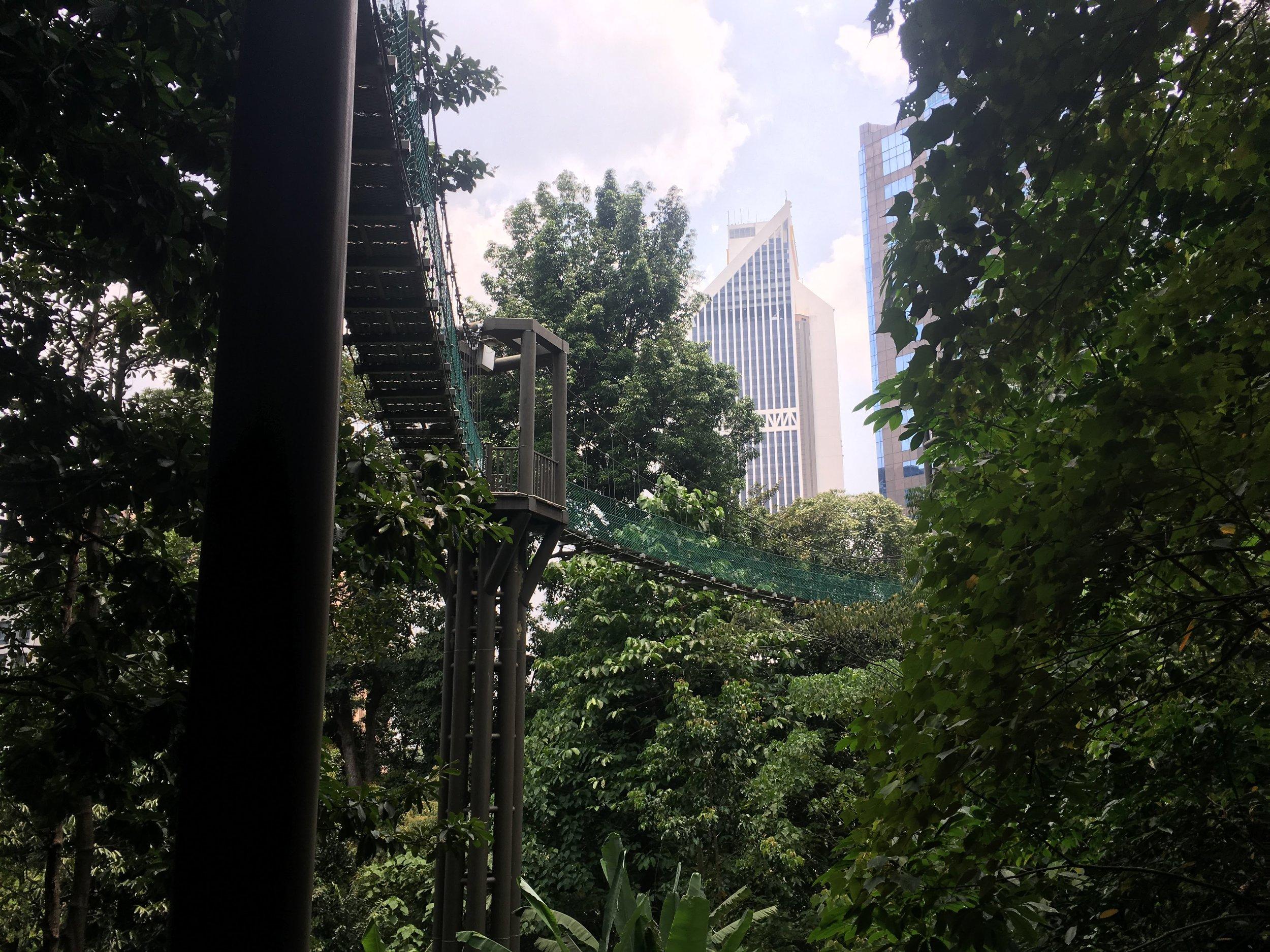 Canopy Walk in Kuala Lumpur