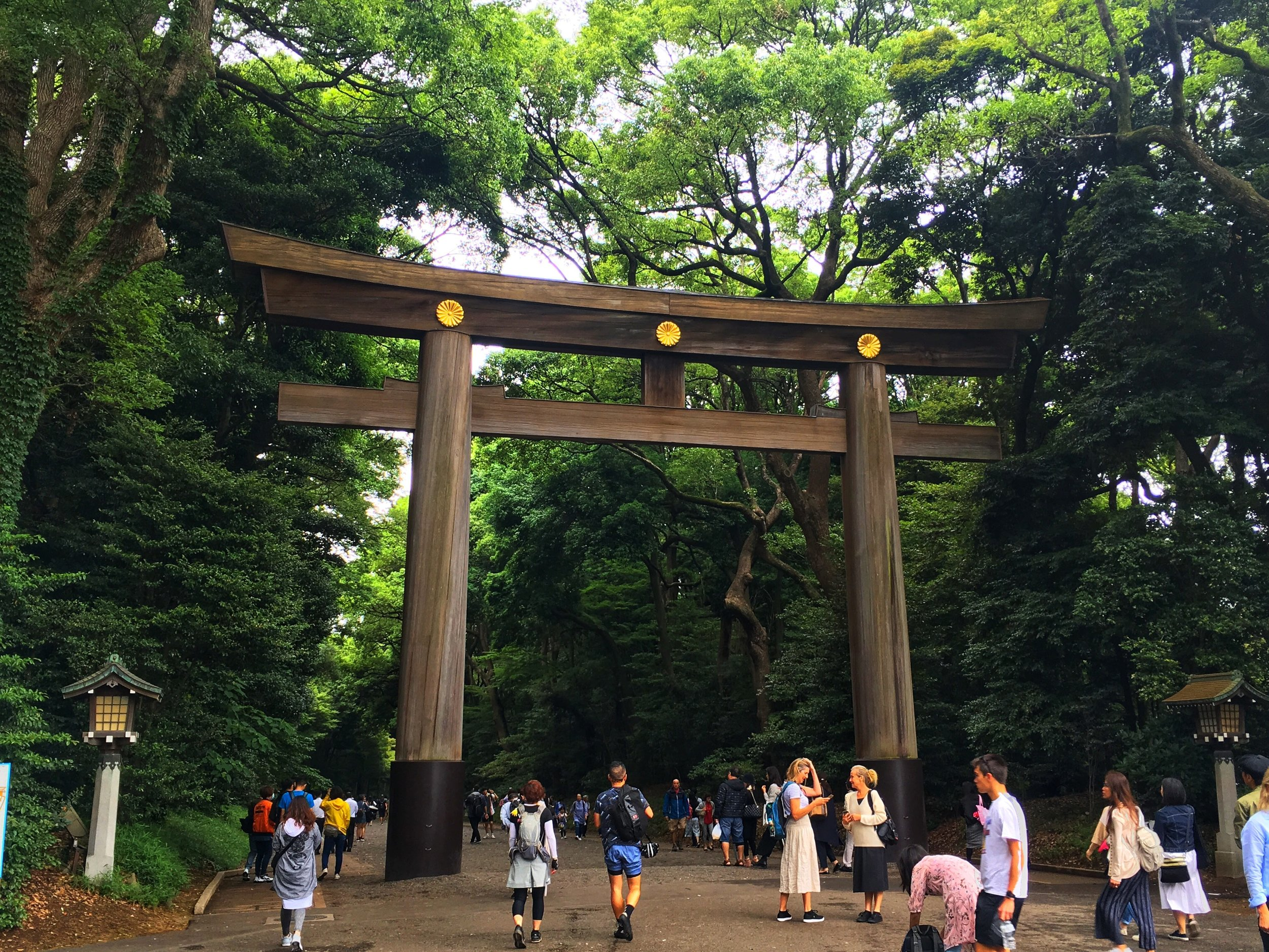 The giant wooden gates at the Meiji Shrine in Tokyo, Japan