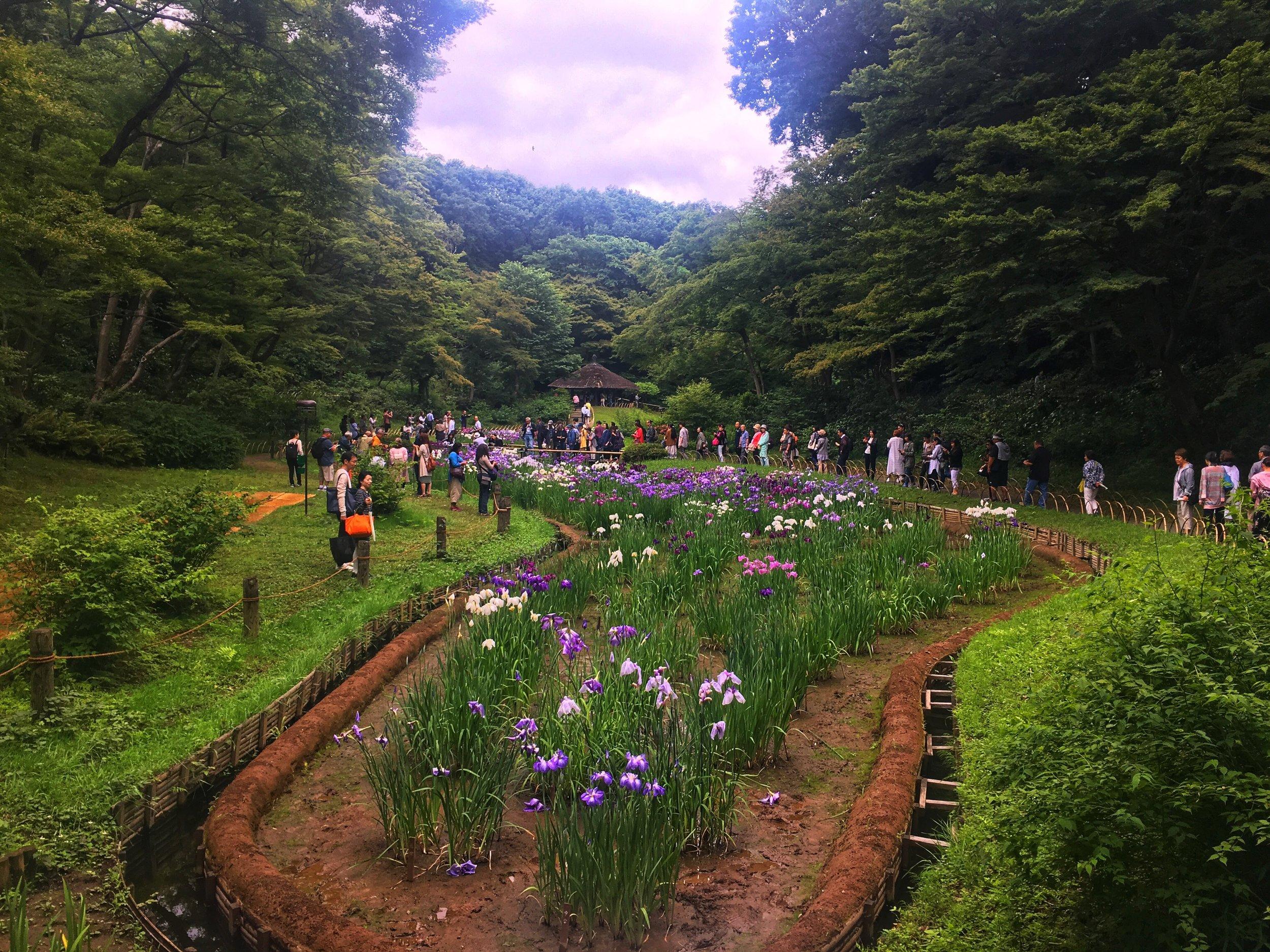 Inner Garden at the Meiji Shrine in Tokyo