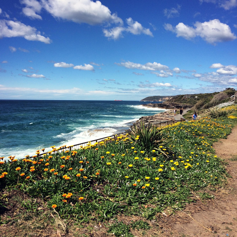 Curl Curl Boardwalk | Sydney