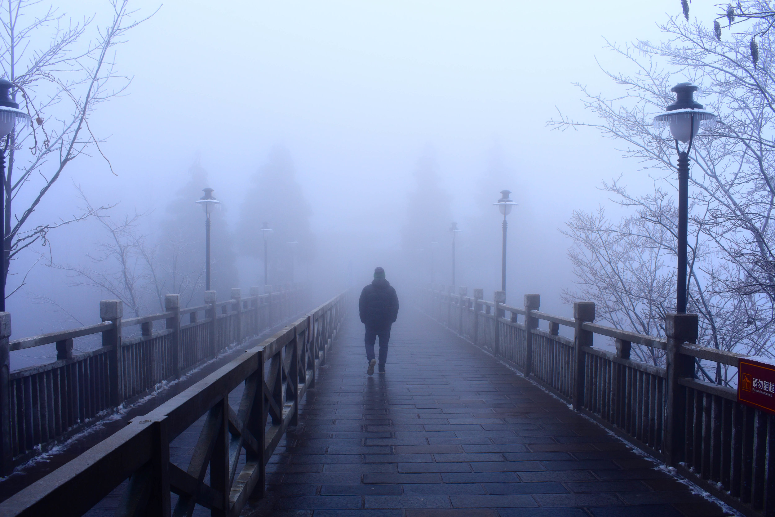Zhangjiajie Through the Mist