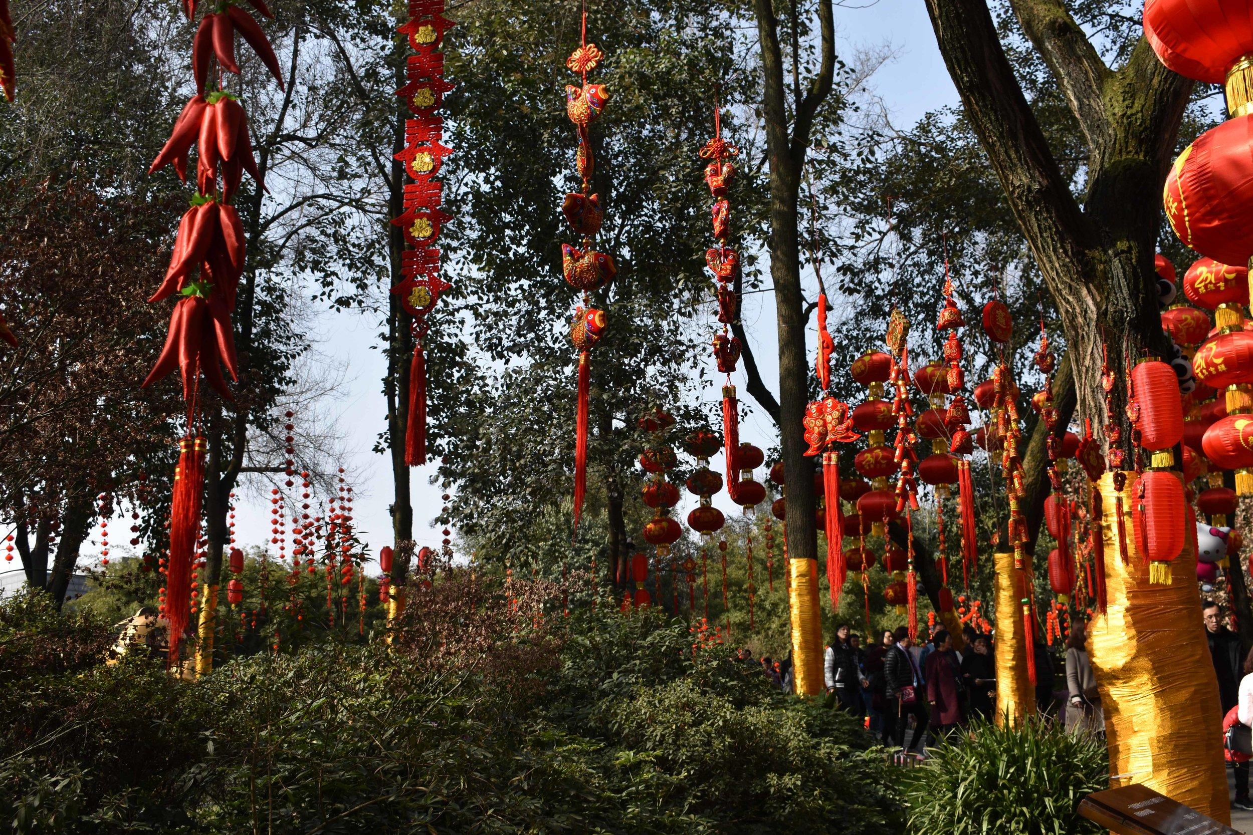 Chinese New Year at the Panda Base