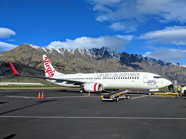 Where's this bird sitting?  Hint: 🇳🇿 #repost from our #facebook page.