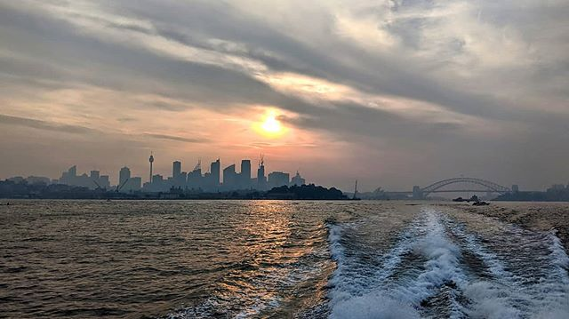 #hazy day back in Sydney #manlyfastferry #backburning #lazyrhino 🔥🔥