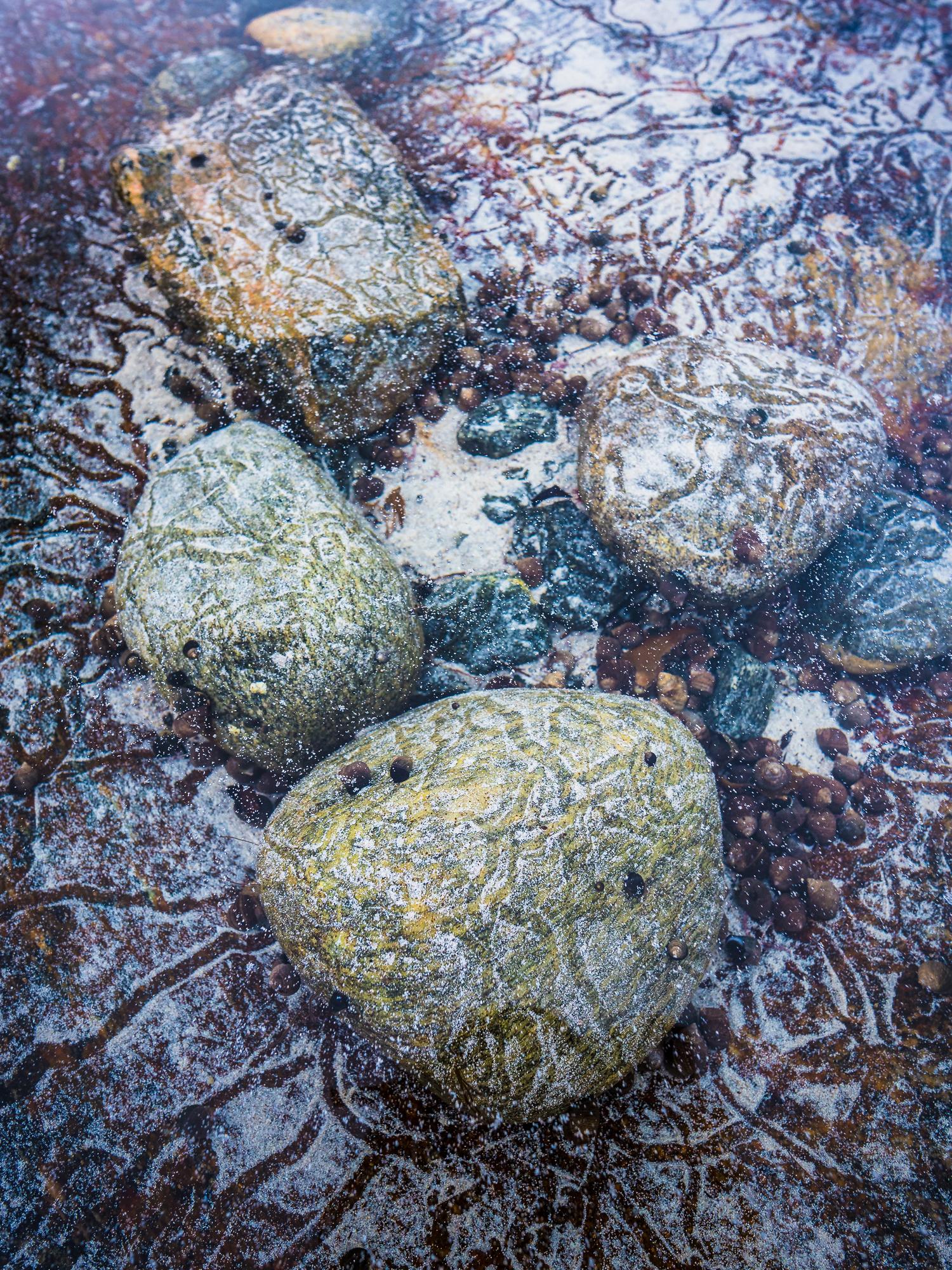 Blimsanden, Vigra-_DSC4714-Bjørn Joachimsen.jpg