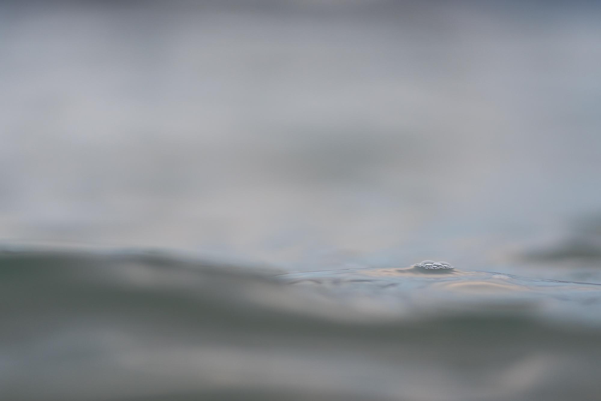 Sandoya-DSC_9052-Bjørn Joachimsen.jpg