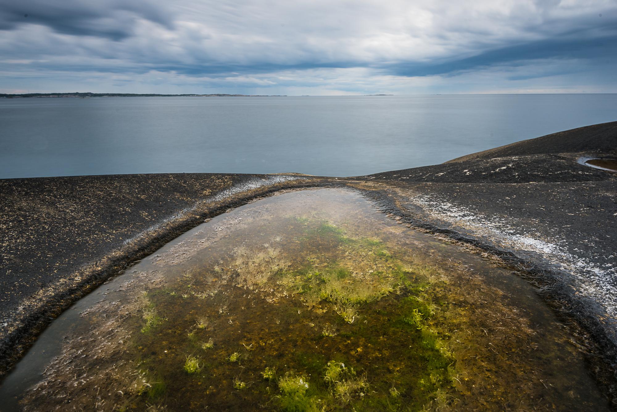 Yxney-_DSC1725-©Bjørn Joachimsen.jpg