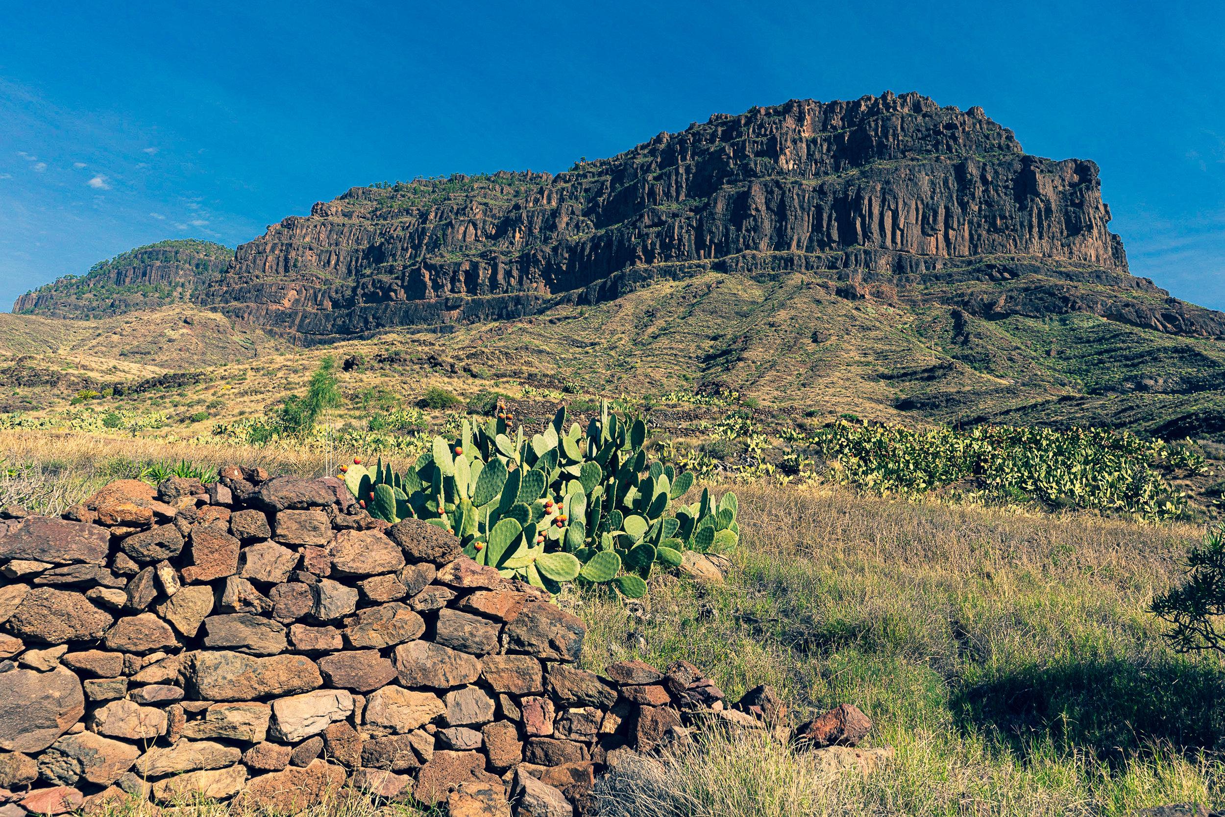 Inagua, Gran Canaria-_DSC5880-©Bjørn Joachimsen.jpg