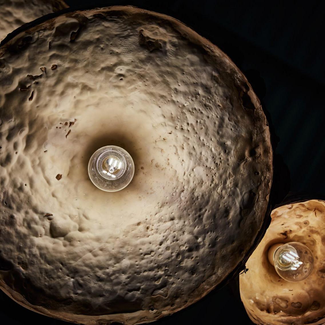 mycelium-timber.jpg