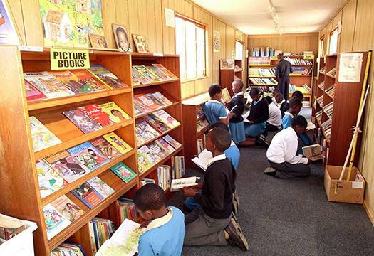 A library in South Africa (pic from National Libraries website)