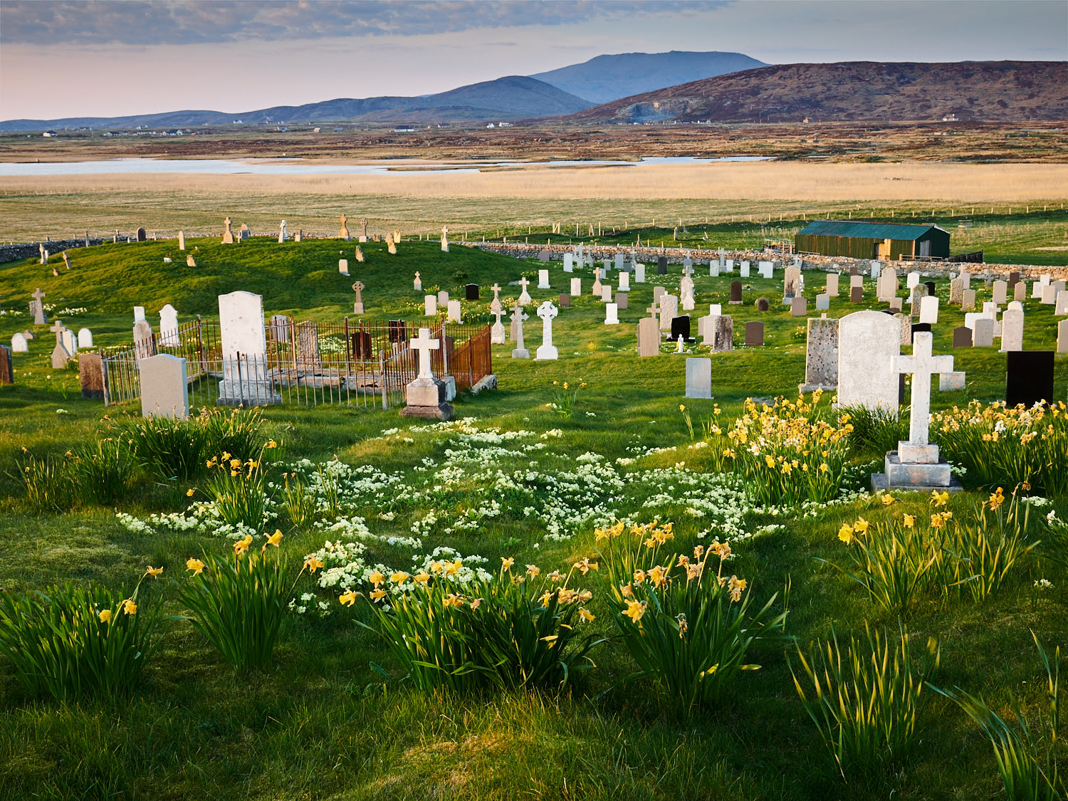 daliburgh_burial_ground_mf 1.jpg