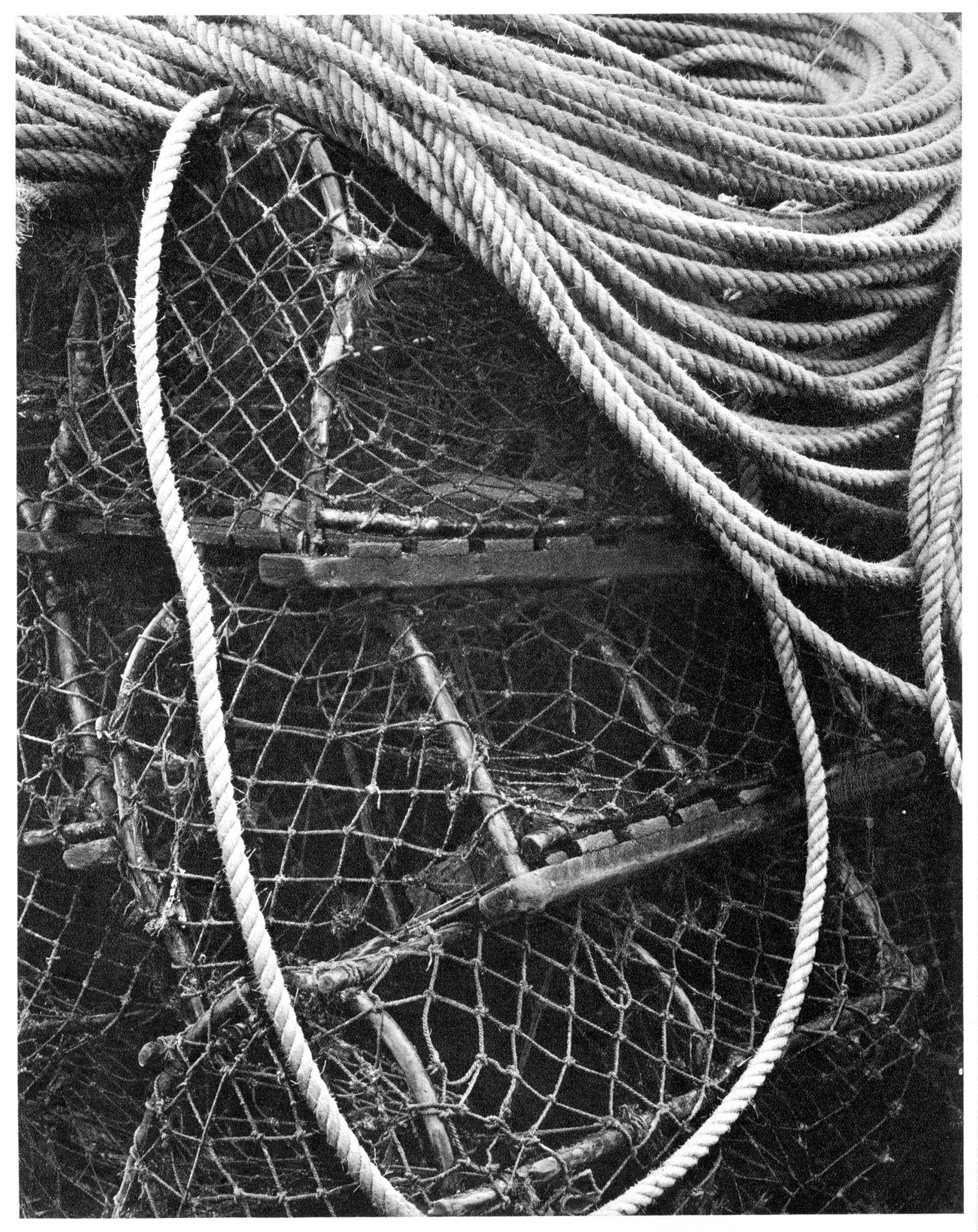 after_strand_lobster_crails_ps.jpg