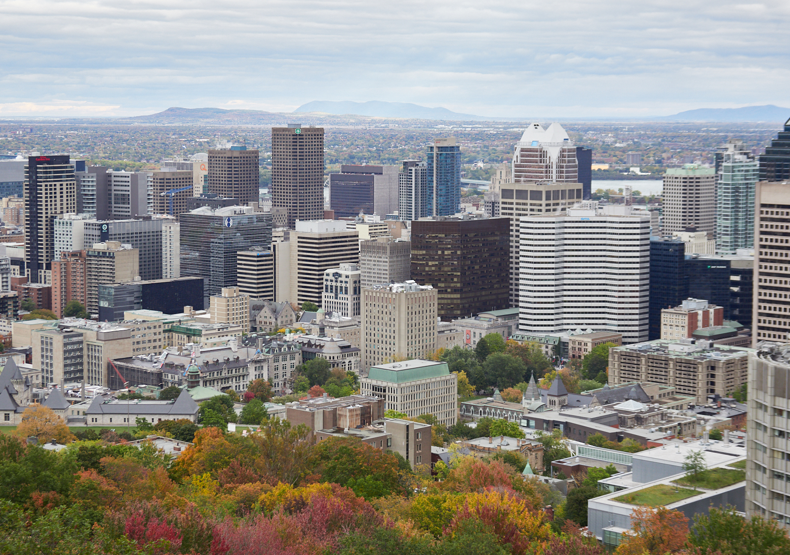 Montreal in the Fall1600x1200 sRGB 4.jpg