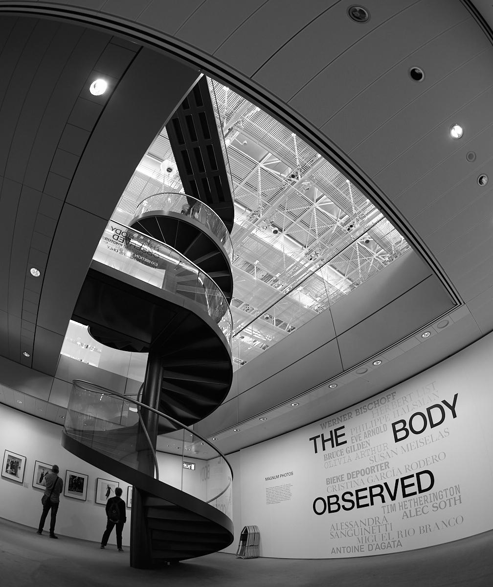 The body observed 1600x1200 sRGB.jpg
