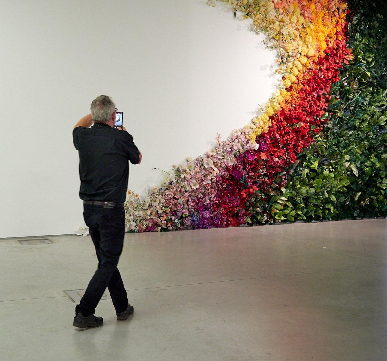 Museum of Contemporary Art blooms 1600x1200 sRGB.jpg