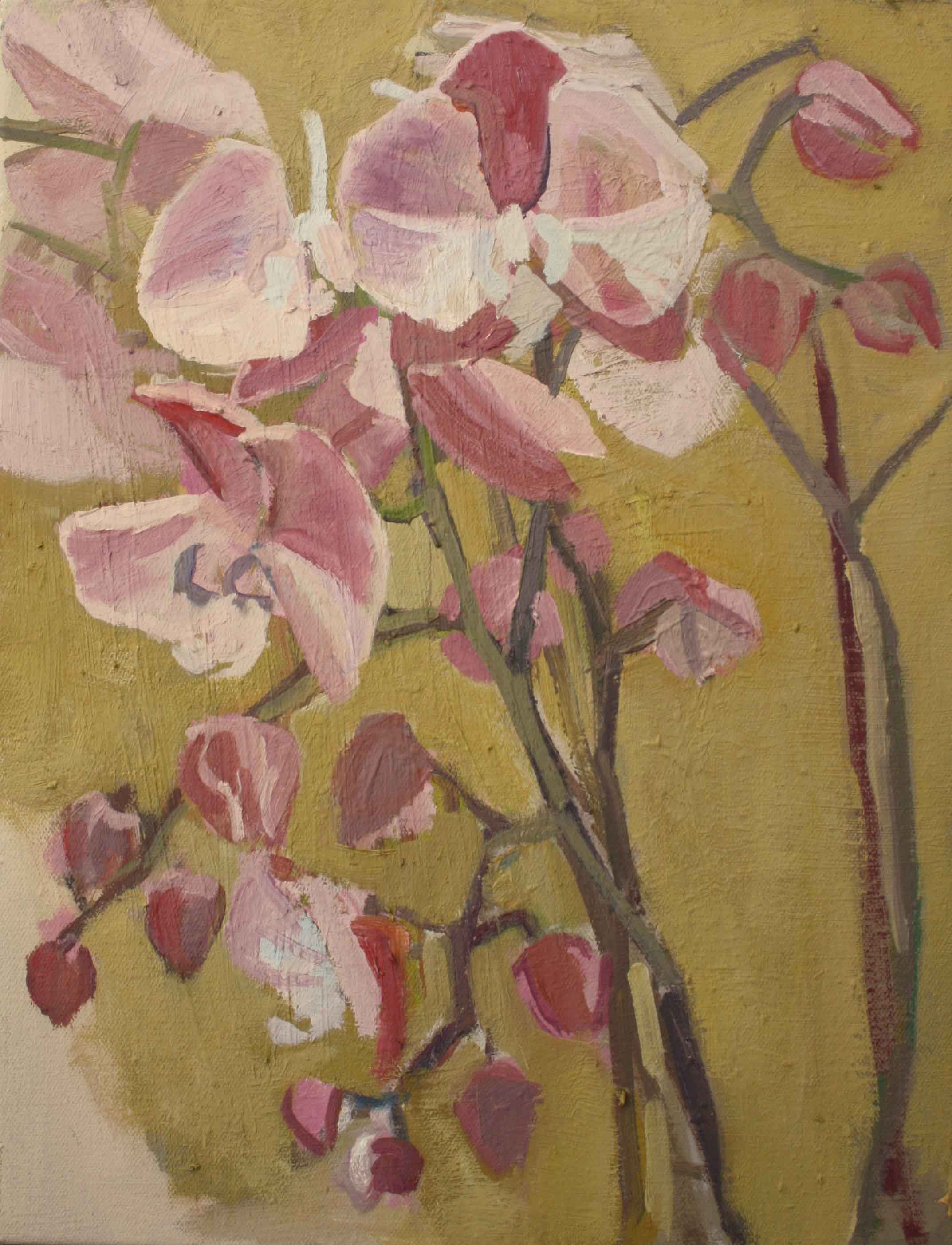 35 x 27 cm Pink Orchid II, Oil on Canvas