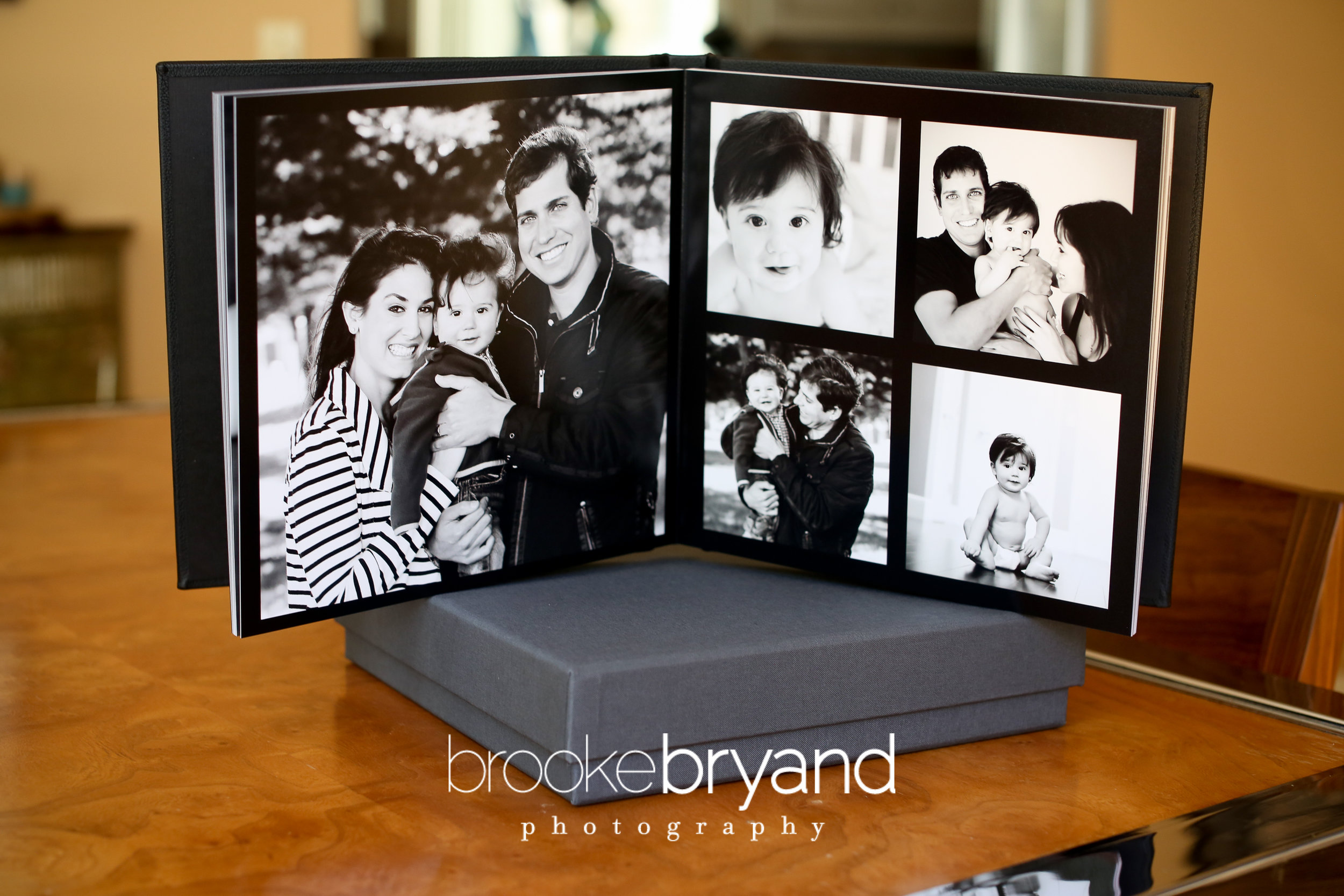 10.2013-Albums-Brooke-Bryand-Photography-Millers-Layflat-Signature-Album-BBP_6167.jpg