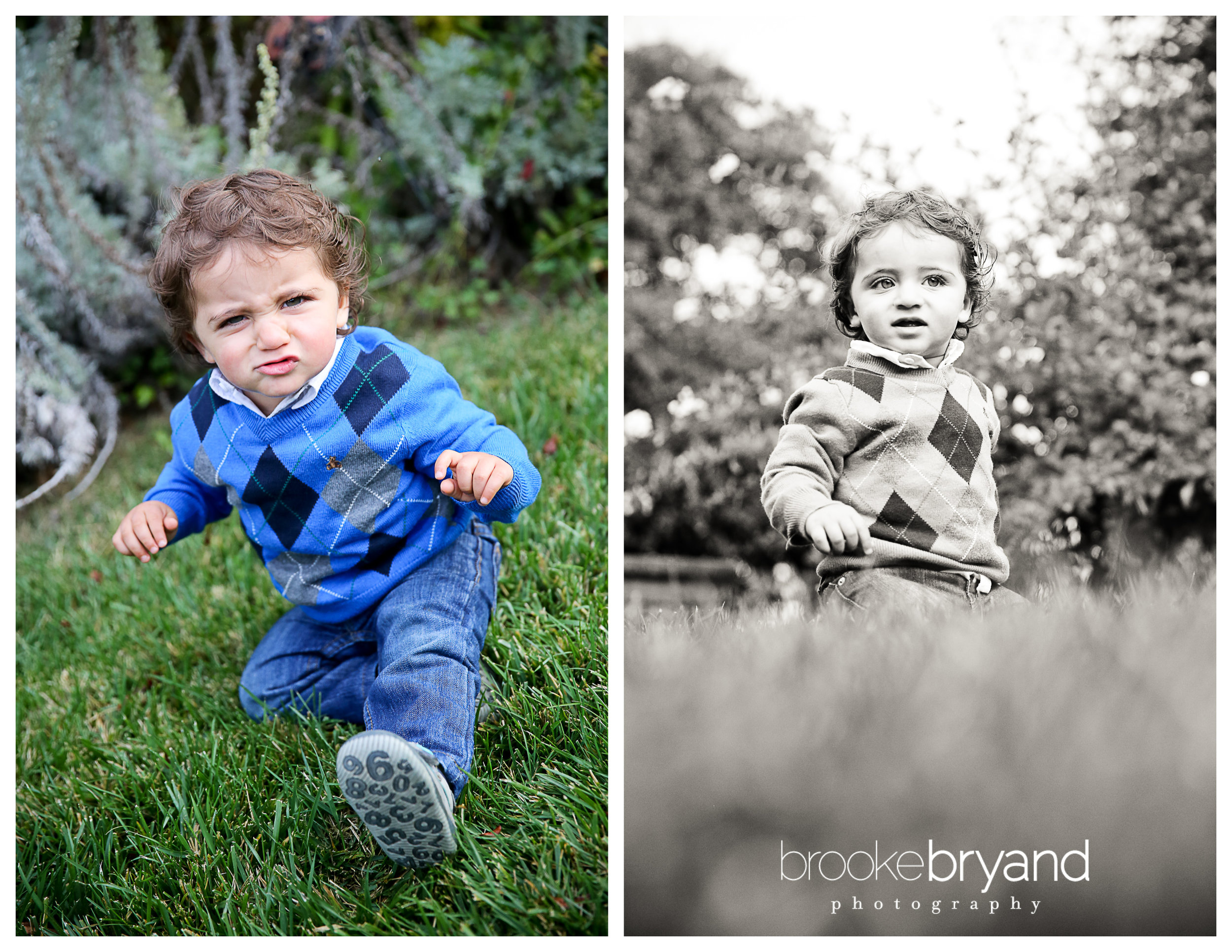 2up_barenblat_brooke-bryand-photography_san-francisco-family-photographer_presidio-lovers-lane-family-photo-location-1.jpg