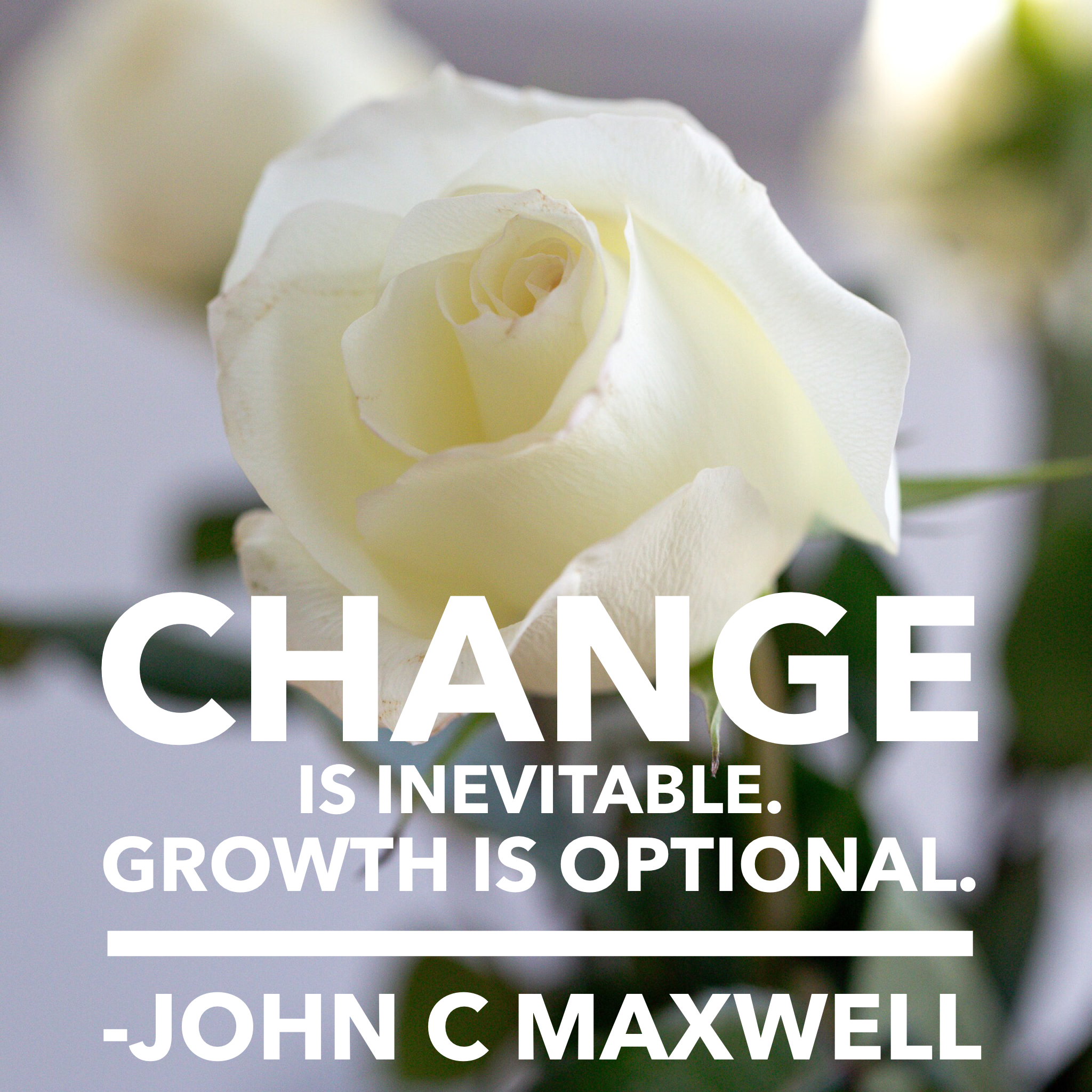 01.01.2018-change is inevitable growth is optional-corporate lifestyle photography-365 photo project challenge-brooke bryand photography_3651.PNG
