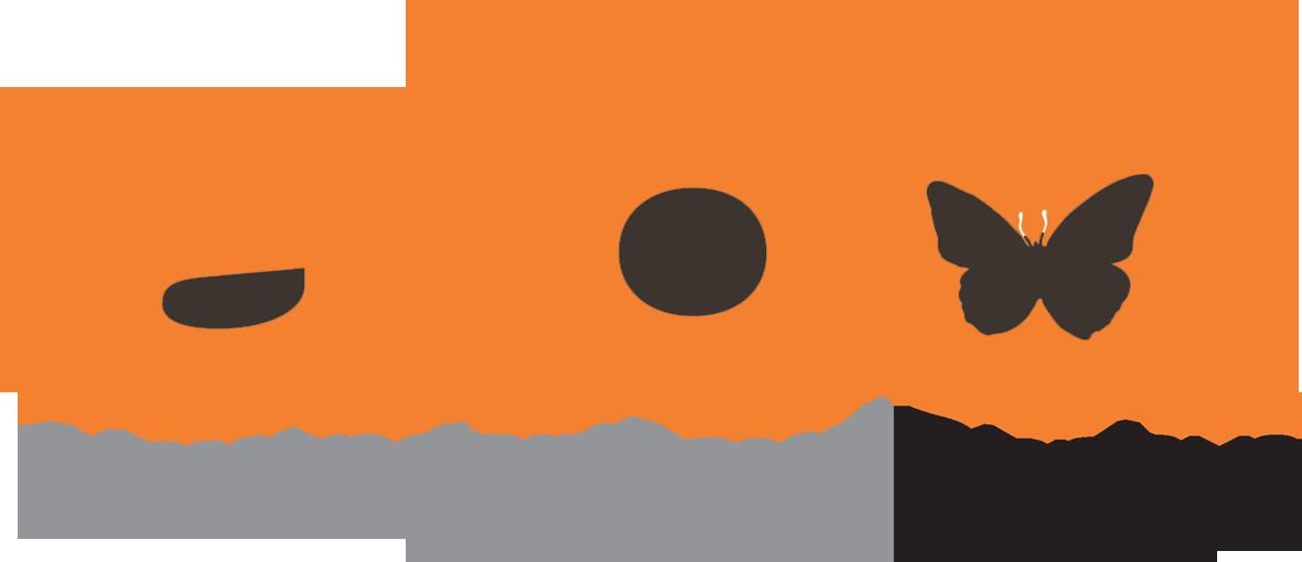 Alexander Boyd Displays