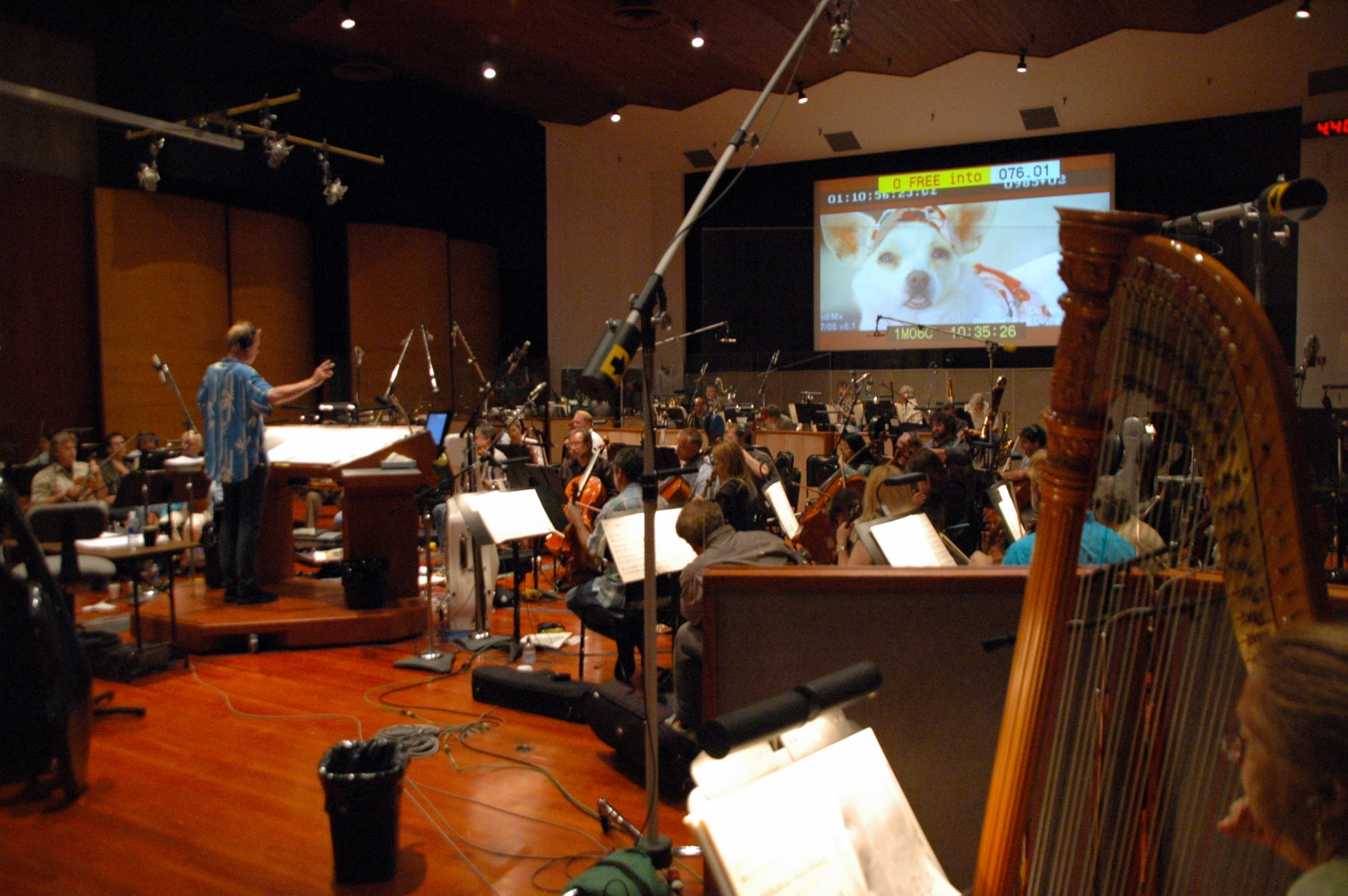 Beverly Hills Chihuaha session with Heitor Pereira at Warner Bros.jpg