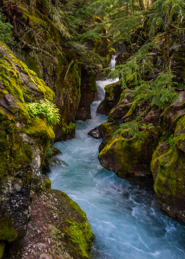 Crystal Blue Waters Tumbling Down the Canyon Formed By Avalanche Creek