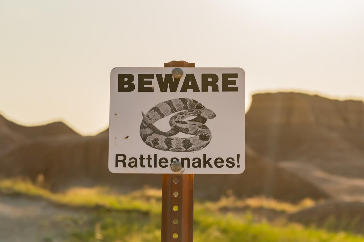 Beware Rattlesnakes Sign