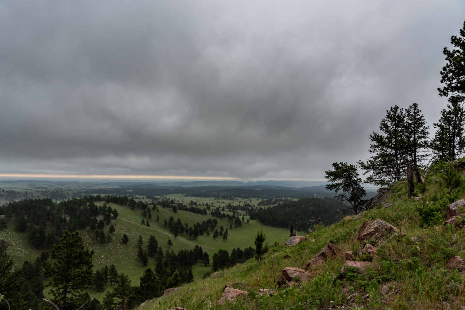 Rolling Fields in Black Hills Wilderness
