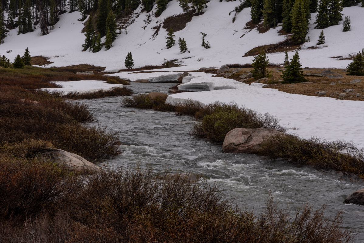 Beartooth River Rushes Along Snowy Bank