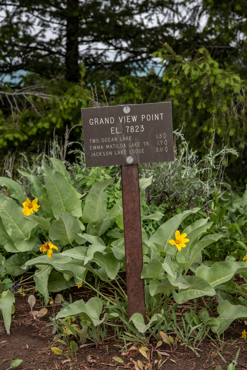 Grand View Point Sign at Trail Junction