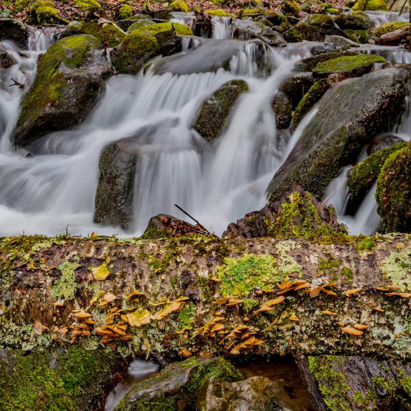 Waterfall along Little River