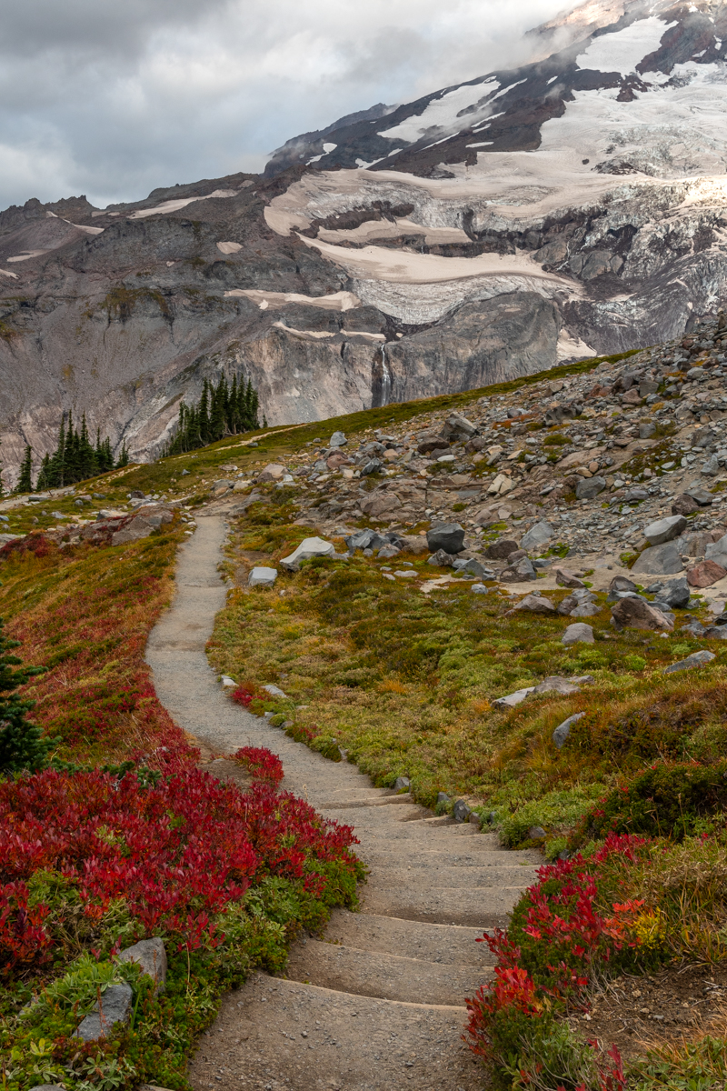 Dirt Trail Through Alpine Meadow in Fall