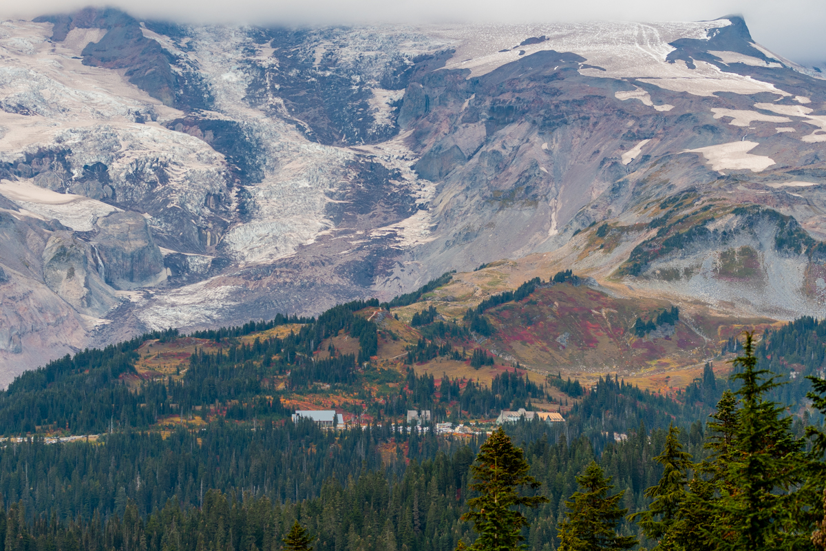 Paradise Glows with Autumn Colors at Base of Mount Rainier