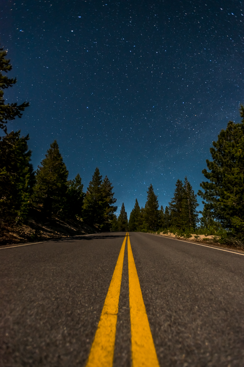 Open Starry Sky Over Bright Lassen
