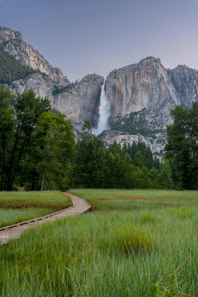 Meadow Underneath Yosemite Falls