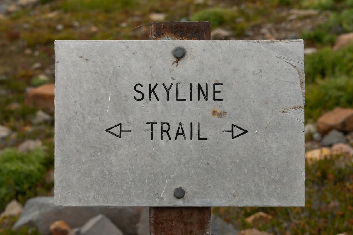 Skyline Trail Arrows Sign