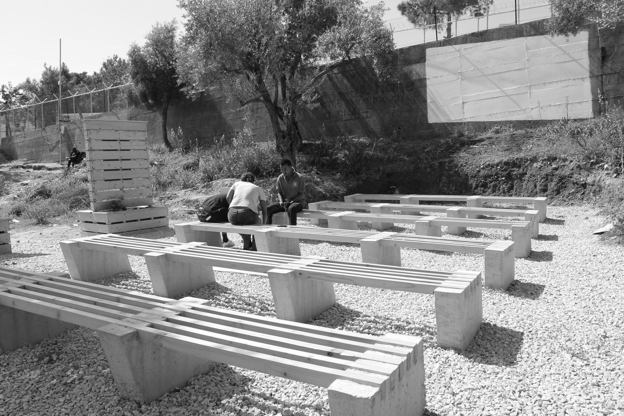 Olive Grove Participatory Construction 1 -