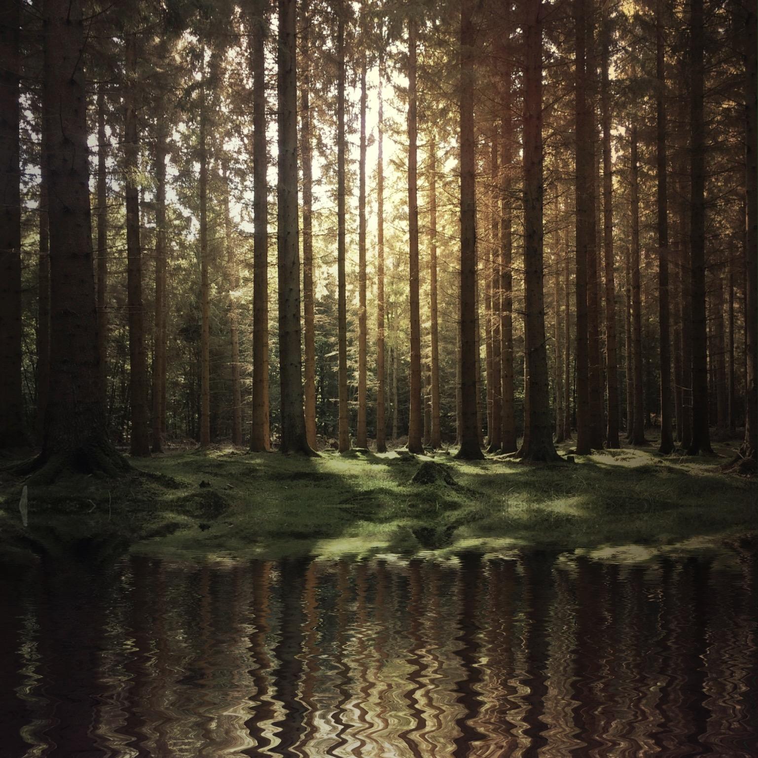 @a_have (snapseed, flood) - FPSYKVX.JPG
