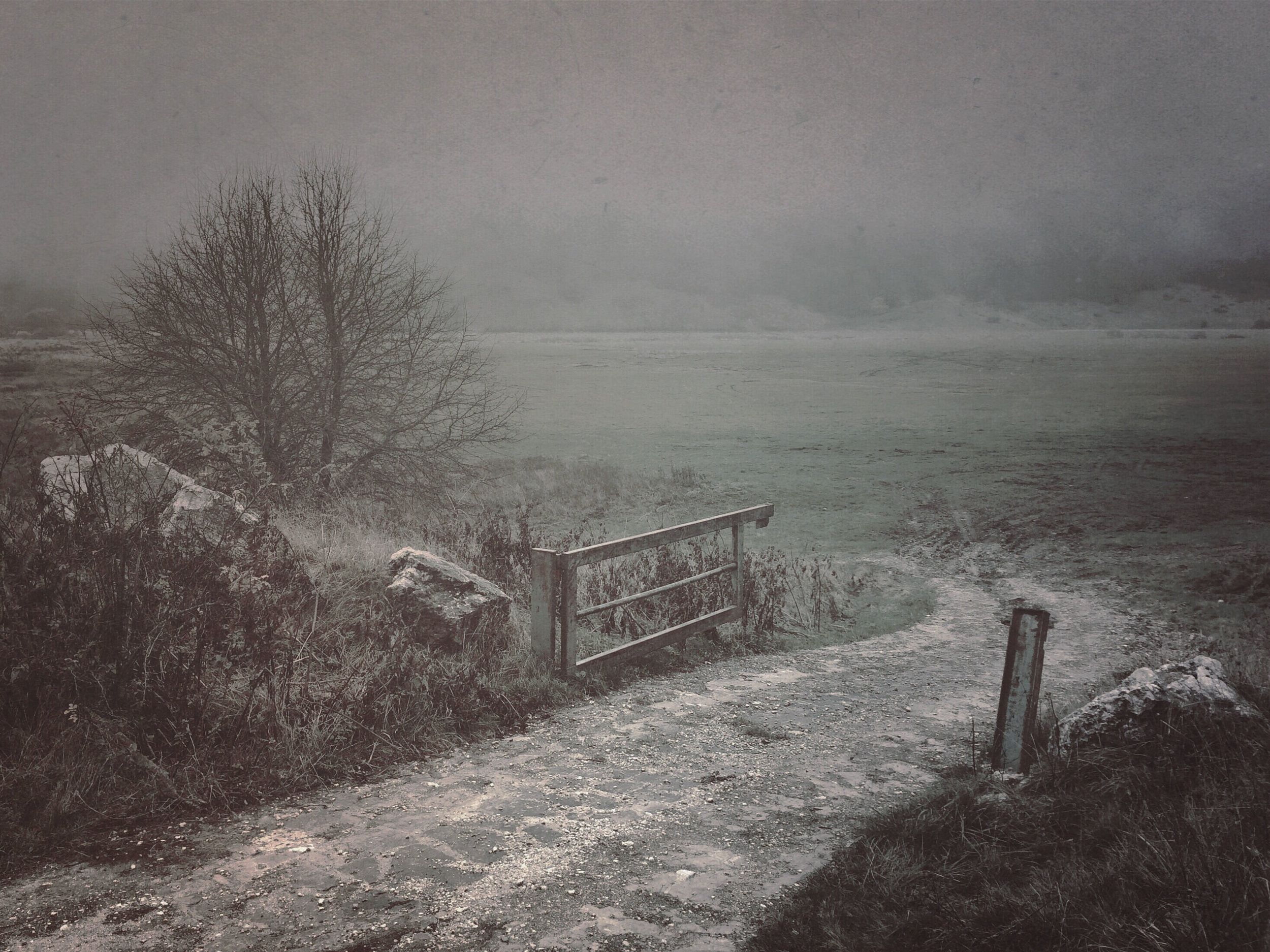 landscape-IMG_5867.JPG