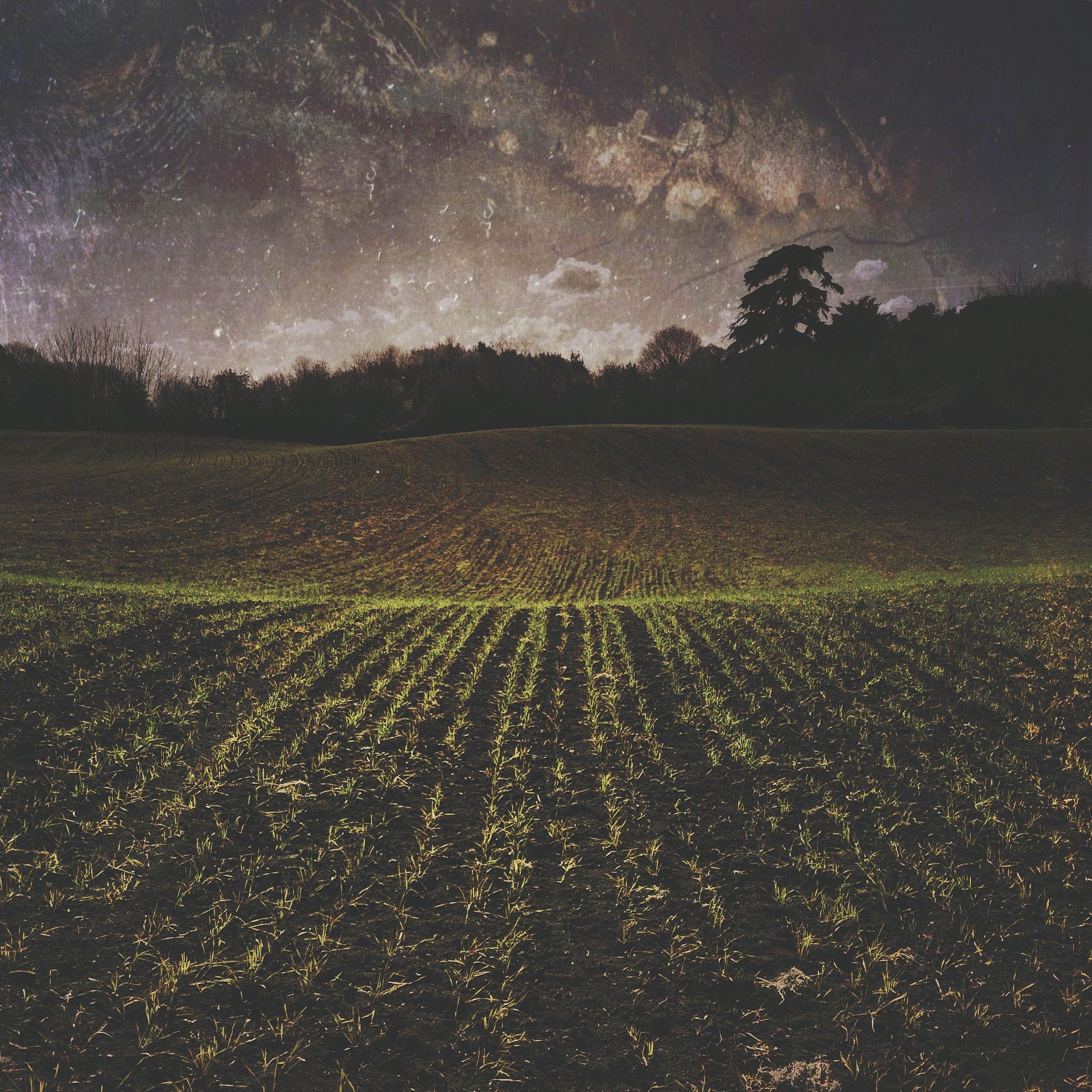 landscape-IMG_7415.JPG