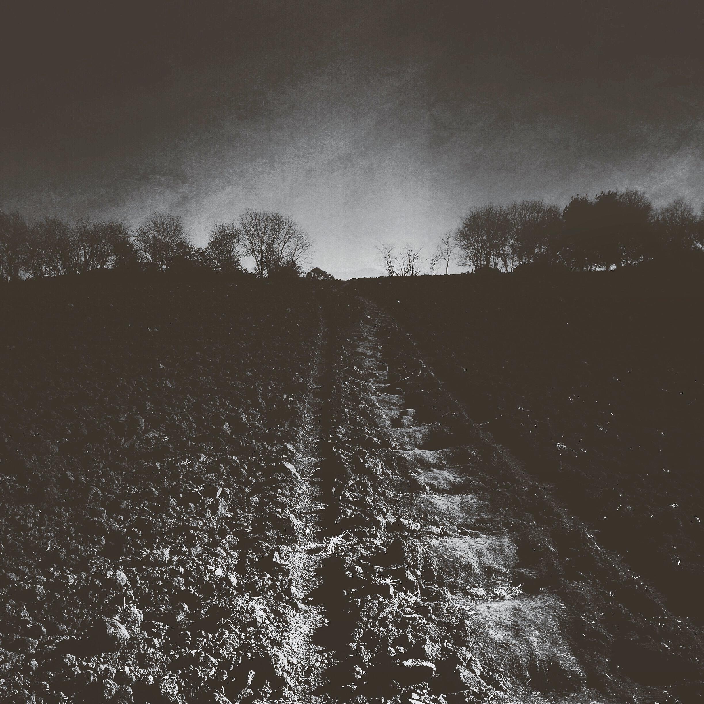landscape-IMG_7615.JPG
