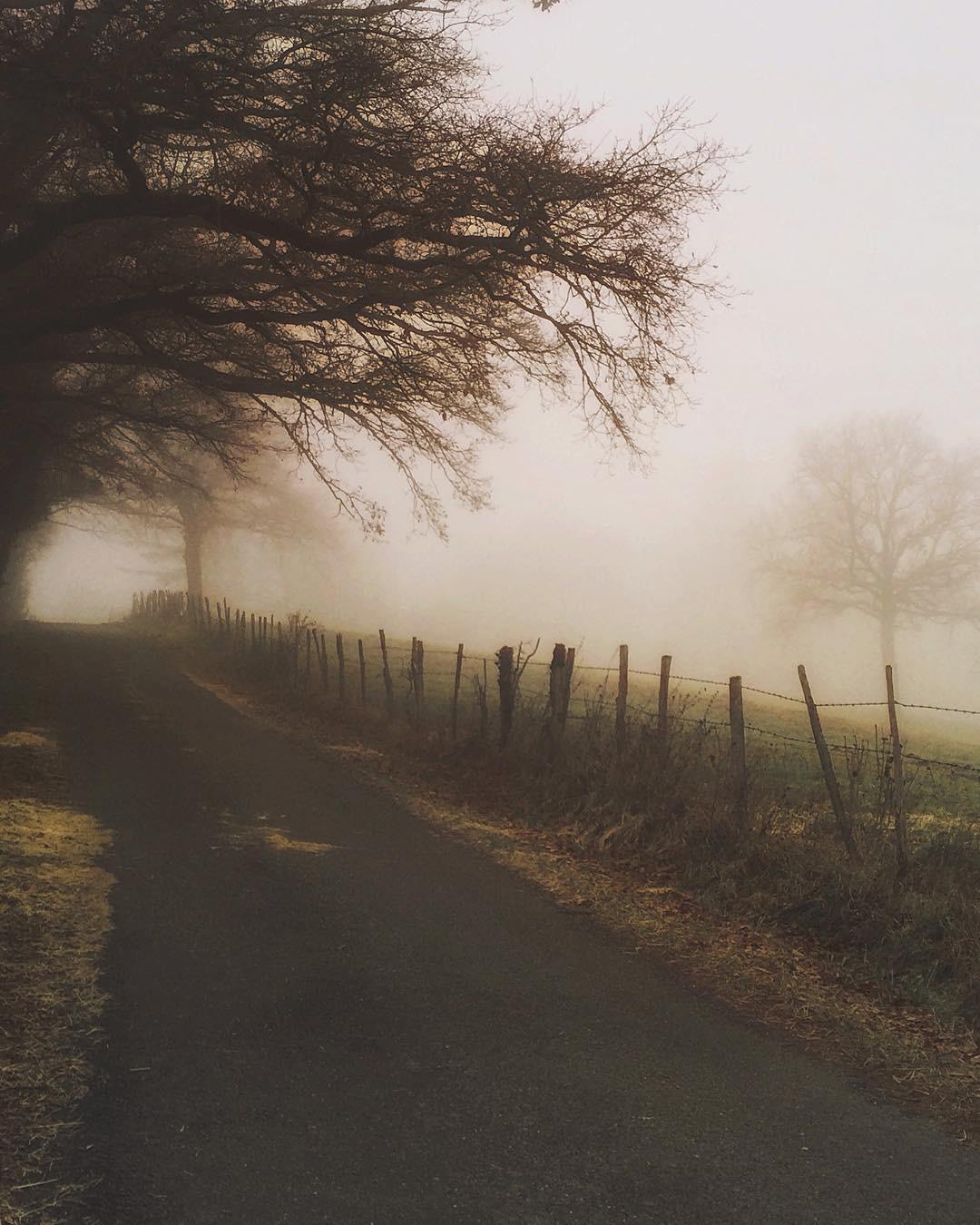 soulfulwanderings - TLRMJCT.jpeg