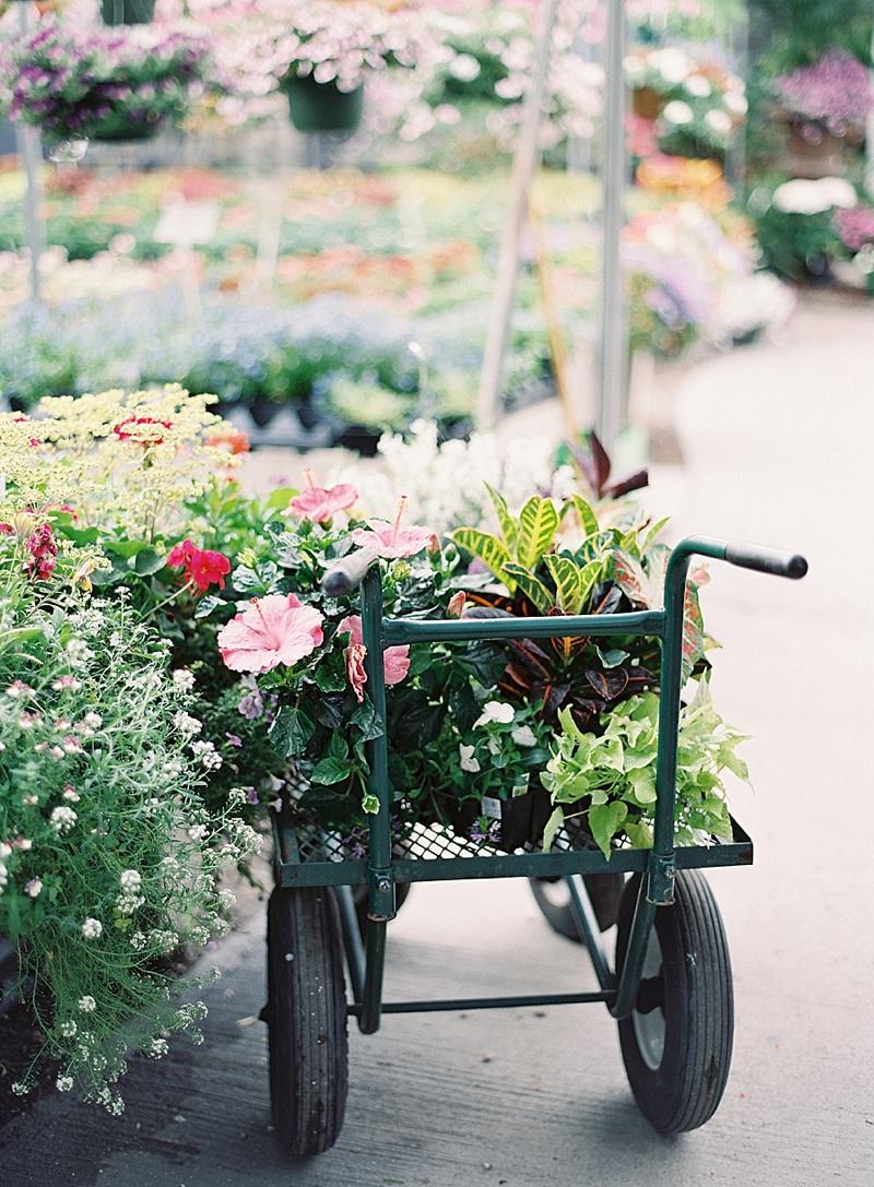 charleston_garden_elopement_3.jpg