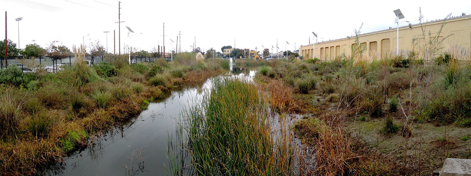 the South los angeles wetland park, with its building facility to the right