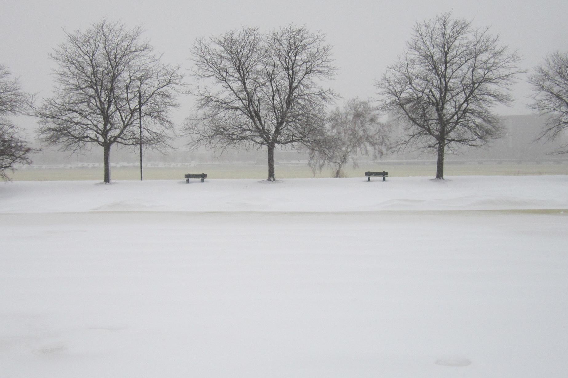 Boston in February
