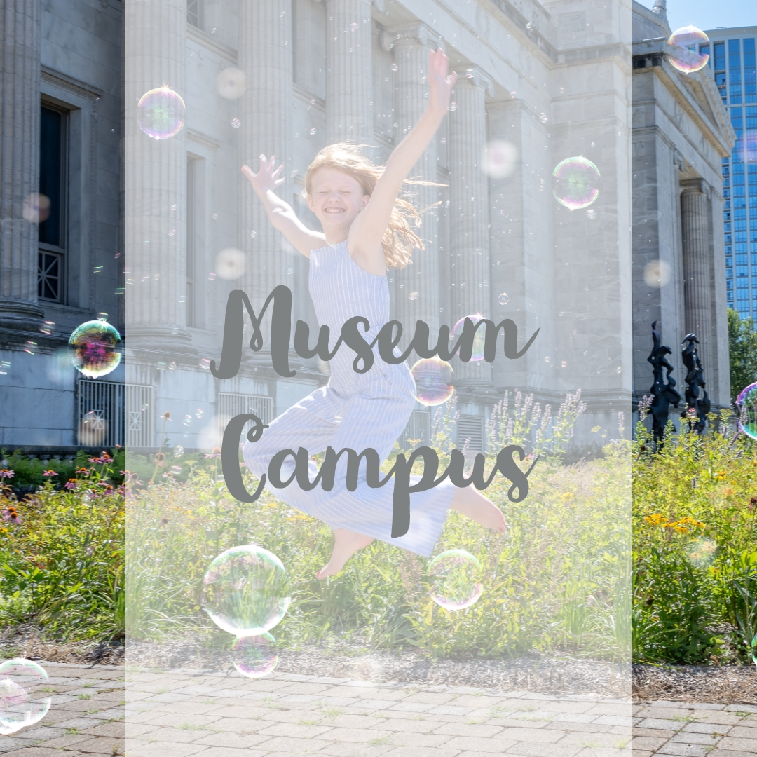Museum Campus.jpg