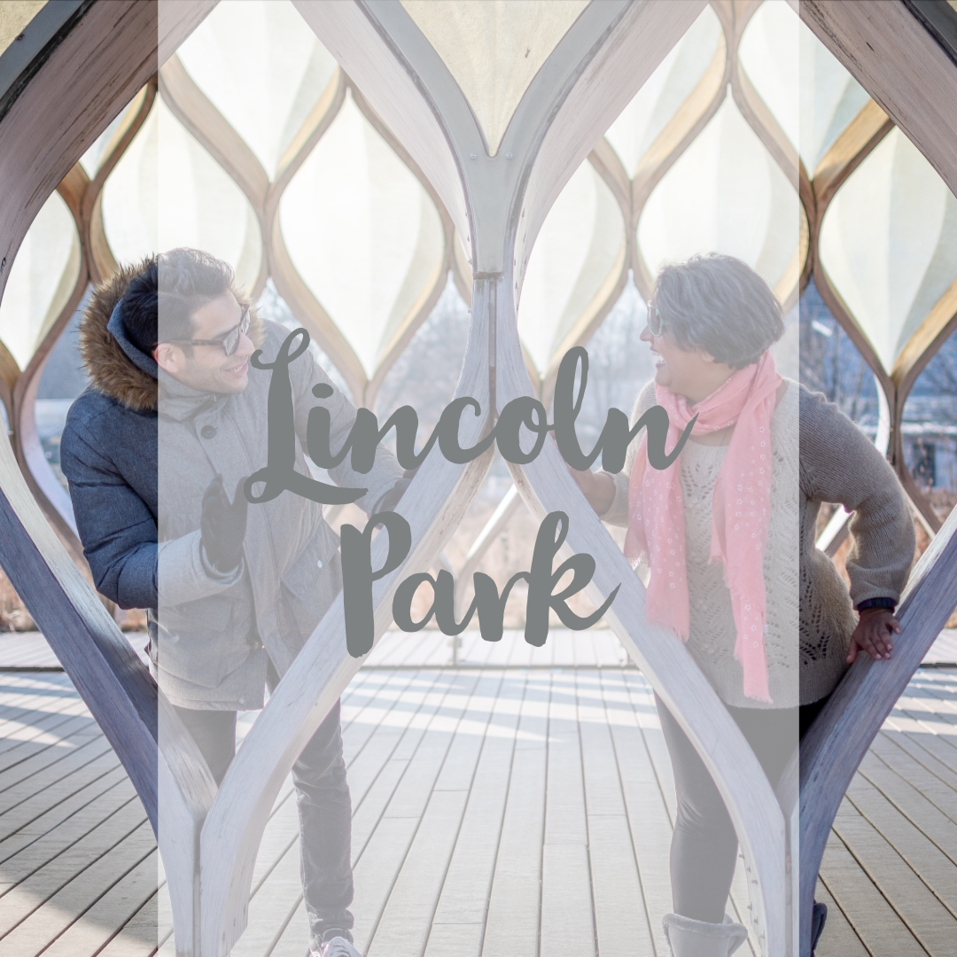 Lincoln Park.jpg
